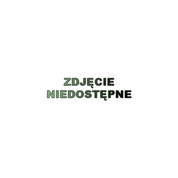 GNPC - 1/3-100 Pojemnik gastronomiczny GN zczarnego poliwęglanu